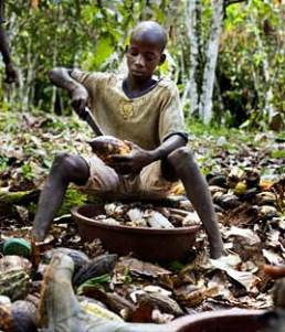 Who is to blame for 8-year old Hussein being a child laborer? Is it corporations, suppliers, consumers or governments?